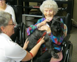 Pet therapy brings smiles